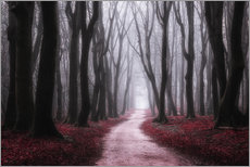Gallery Print  Red Reverie - tvurk photography