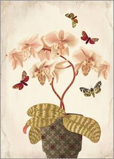 Gallery Print  Stillleben mit Orchidee - Mandy Reinmuth