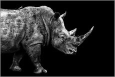 Gallery Print  Safari Profil Collection - Rhino Black Edition - Philippe HUGONNARD