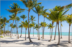 Jane Sweeney - Juanillo Beach, Cap Cana, Punta Cana, Dominican Republic, West Indies, Caribbean, Central America