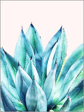 Wandsticker Agave Watercolor
