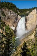 Wandsticker  Lower Falls, Yellowstone Nationalpark - Michael DeFreitas