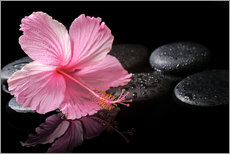Wandsticker  Hot Stone Massage mit Hibiskus