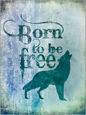 Gallery Print  born to be free - Andrea Haase