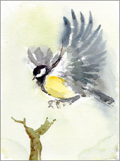 Wandsticker  Kohlmeise, fliegender Vogel - Verbrugge Watercolor