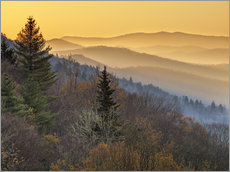 Gallery Print  Great Smoky Mountains Nationalpark - Ann Collins