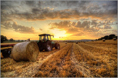 Wandsticker  Harvested Cornfield Sunset - Simon West