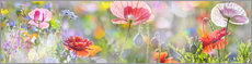 Wandsticker  zarter Mohn in Pastell - Art Couture