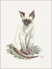 Gallery Print  Kleine Siam Katze, Aquarell - Mary Want