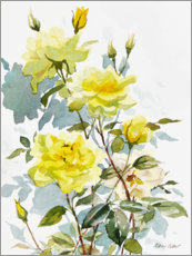 Hartschaumbild  Gelbe Rosen, Aquarell - Mary Want