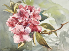 Hartschaumbild  Rhododendron Aquarell - Mary Want
