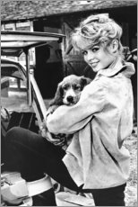 Leinwandbild  Brigitte Bardot mit Hündchen - Celebrity Collection