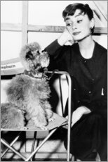 Gallery Print  Audrey Hepburn mit Hündchen - Celebrity Collection