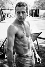 Premium-Poster  Paul Newman - ohne Shirt - Celebrity Collection