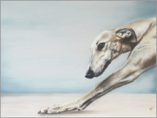 Alubild  Whippet - Victoria Coleman