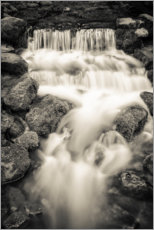 Gallery Print  Fern Spring im Yosemite Nationalpark - Russ Bishop