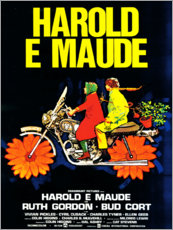 Alubild  Harold und Maude (italienisch) - Entertainment Collection
