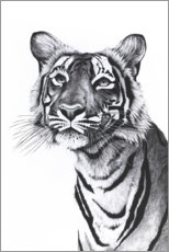 Wandsticker Tiger-Portrait