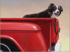 Gallery Print  Border Collie auf Reisen - Julie Chapman