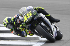 Gallery Print  Valentino Rossi, Yamaha Factory Racing, Silverstone 2019