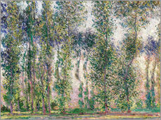 Gallery Print  Pappeln in Giverny - Claude Monet