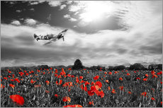 Wandsticker  Spitfire Poppy Pass - airpowerart