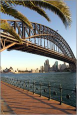 Wandsticker  Sydney Harbour Bridge - David Wall