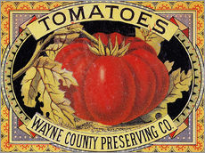 Gallery Print  Tomatoes