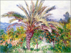 Wandsticker  Palme bei Bordighera - Claude Monet