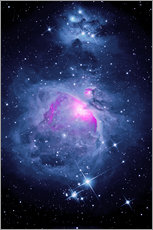 Gallery Print  Orion Nebel M 42 mit Running Man Nebel - MonarchC