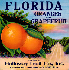 Wandsticker  Florida Oranges and Grapefruit - Advertising Collection