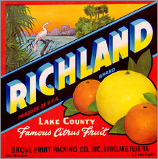 Gallery Print  Richland - Advertising Collection