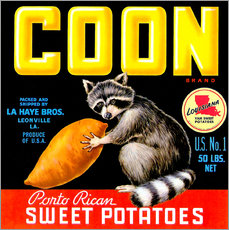 Wandsticker  Coon - Advertising Collection