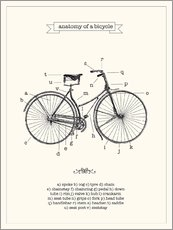 Vintage parts of a Bicycle anatomy