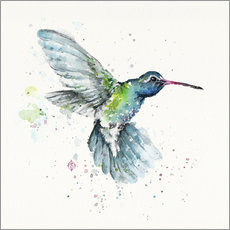 Hummingbird Flurry
