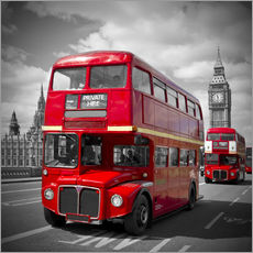 LONDON Rote Busse