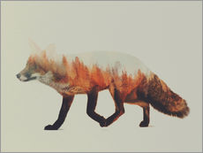 Norwegian Woods The Fox