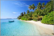 Tropical beach with palms, Maldives