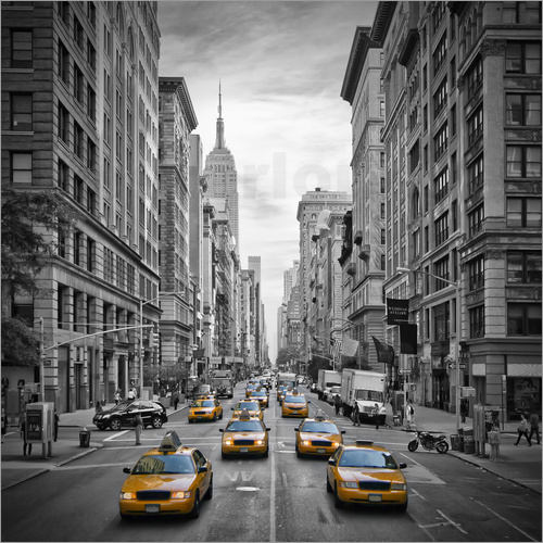 Melanie Viola - 5th Avenue Yellow Cabs