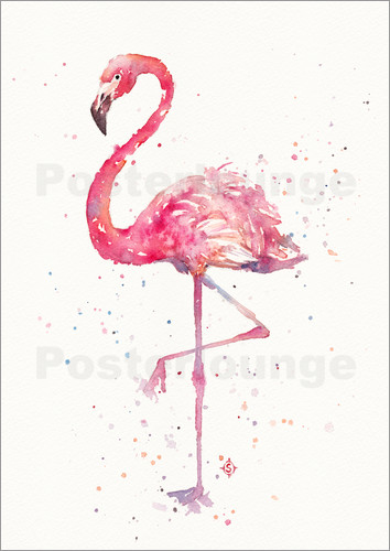 Poster A Flamingos Fancy
