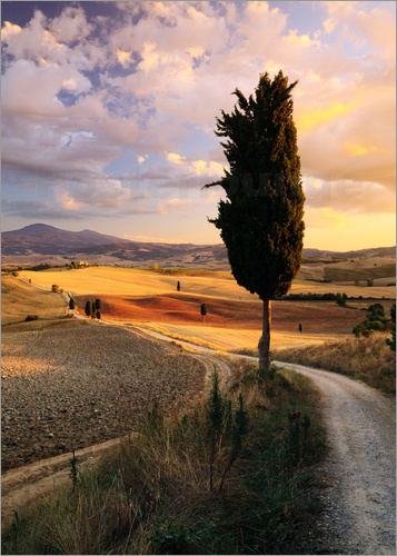 Matteo Colombo - Abend im Val d'Orcia, Toskana