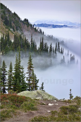 MFR - British Columbia, Whistler. Coming out of the clouds on Whistler Mountain.