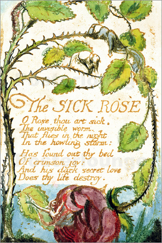 William Blake - Die kranke Rose