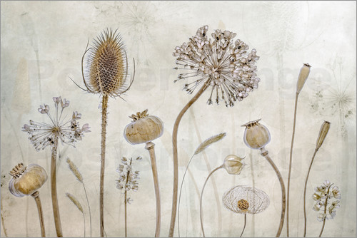 Mandy Disher - Herbst