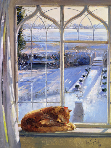 timothy easton katze im fenster winter poster online bestellen posterlounge. Black Bedroom Furniture Sets. Home Design Ideas