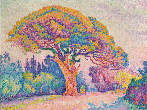 Paul Signac - Kiefer in Saint-Tropez