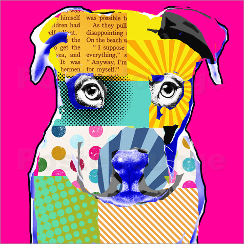 Poster Pop Art Bulldogge