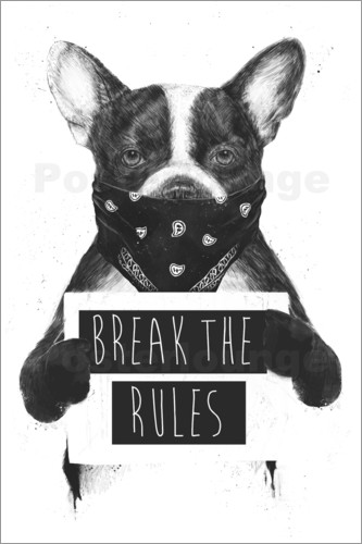 Poster Rebel dog