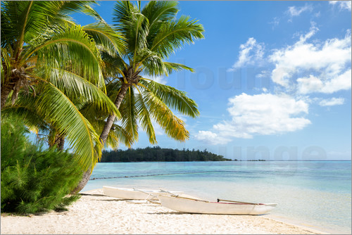 jan christopher becke strand mit palmen und t rkisblauem meer auf tahiti poster online bestellen. Black Bedroom Furniture Sets. Home Design Ideas