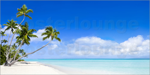 jan christopher becke strand panorama mit t rkisblauem meer fidschi inseln poster online. Black Bedroom Furniture Sets. Home Design Ideas